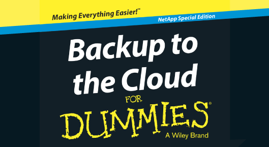 Backup to the Cloud for Dummies