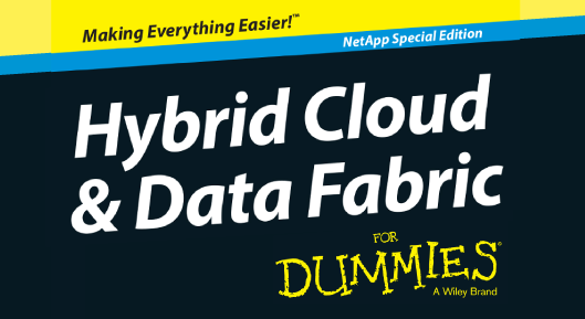 Hybrid Cloud and Data Fabric for Dummies eBook