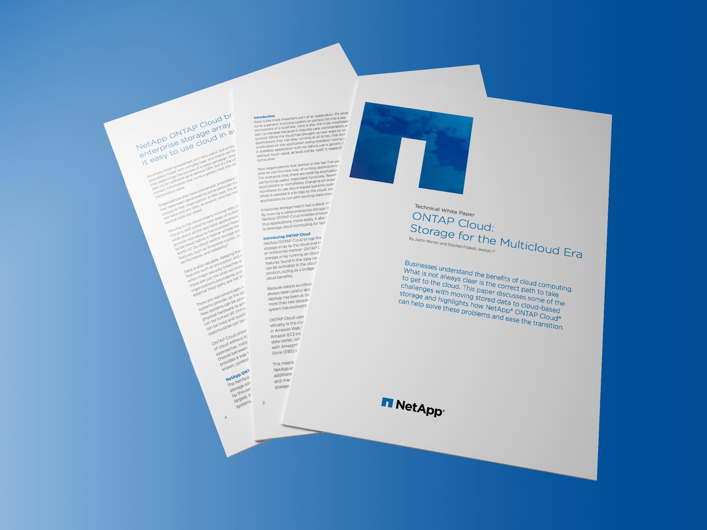 NetApp ONTAP Cloud White Paper